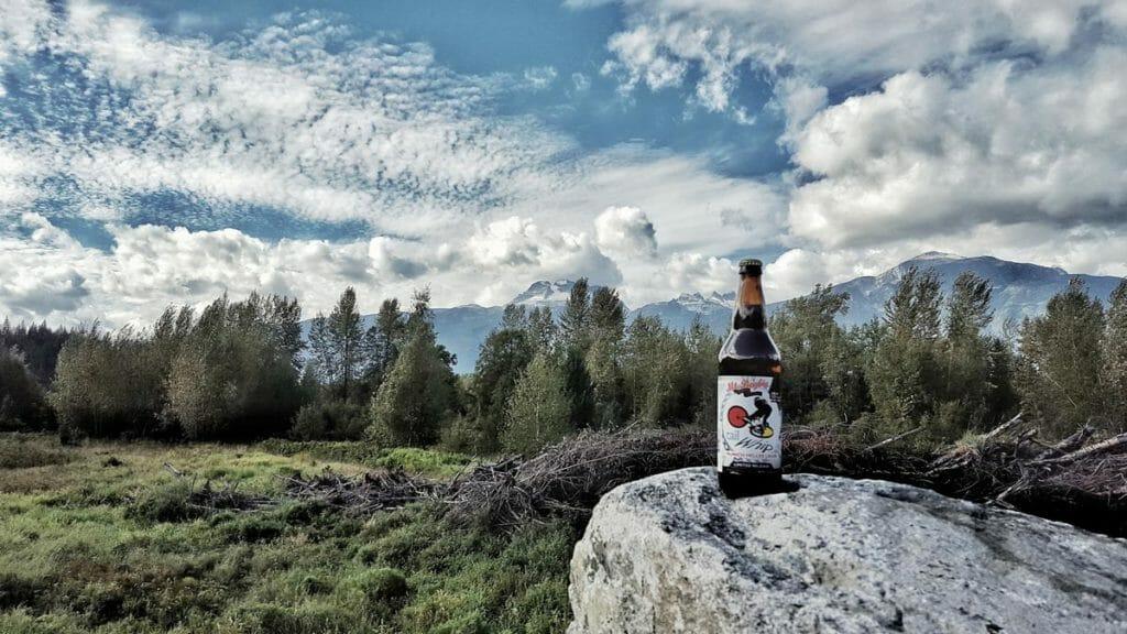 Personal Ale Trail Mount Begbie Landscape