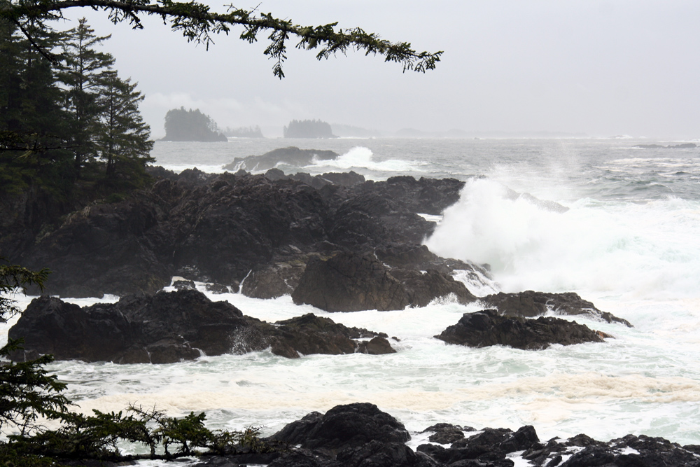 The Wild Pacific Trail has high-impact sea views