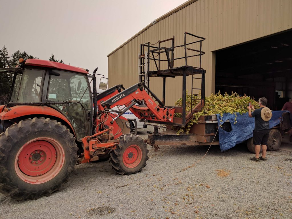 Cedar Valley Hop Yards
