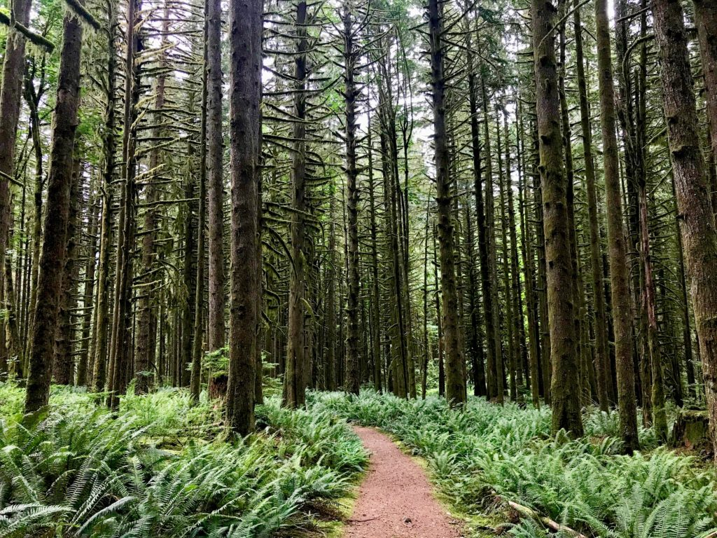 BC Ale Trail - Craft Beer Tourist - West Canyon Trail