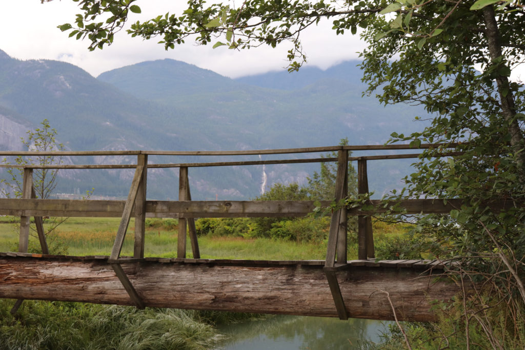 wooden bridge at Squamish Estuary