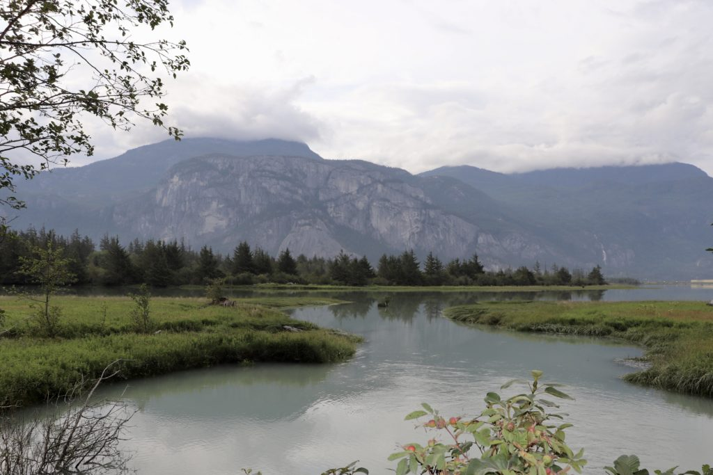 river and mountains at Squamish Estuary