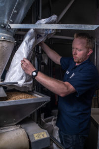 man pouring grains into mash tun for Penticton collaboration beer during BC Craft Beer Month