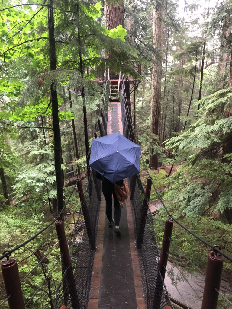 person walking with umbrella on treetop suspension bridge in Vancouver's North Shore