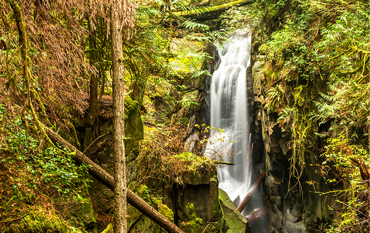 Cypress Falls on the BC Ale Trail