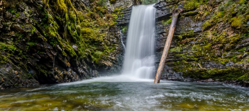 The Ancient Forest Falls on the BC Ale Trail
